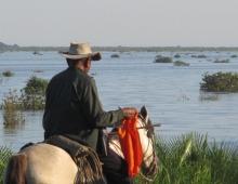 Características culturales de los grupos indígenas de las zoma de Camaguán