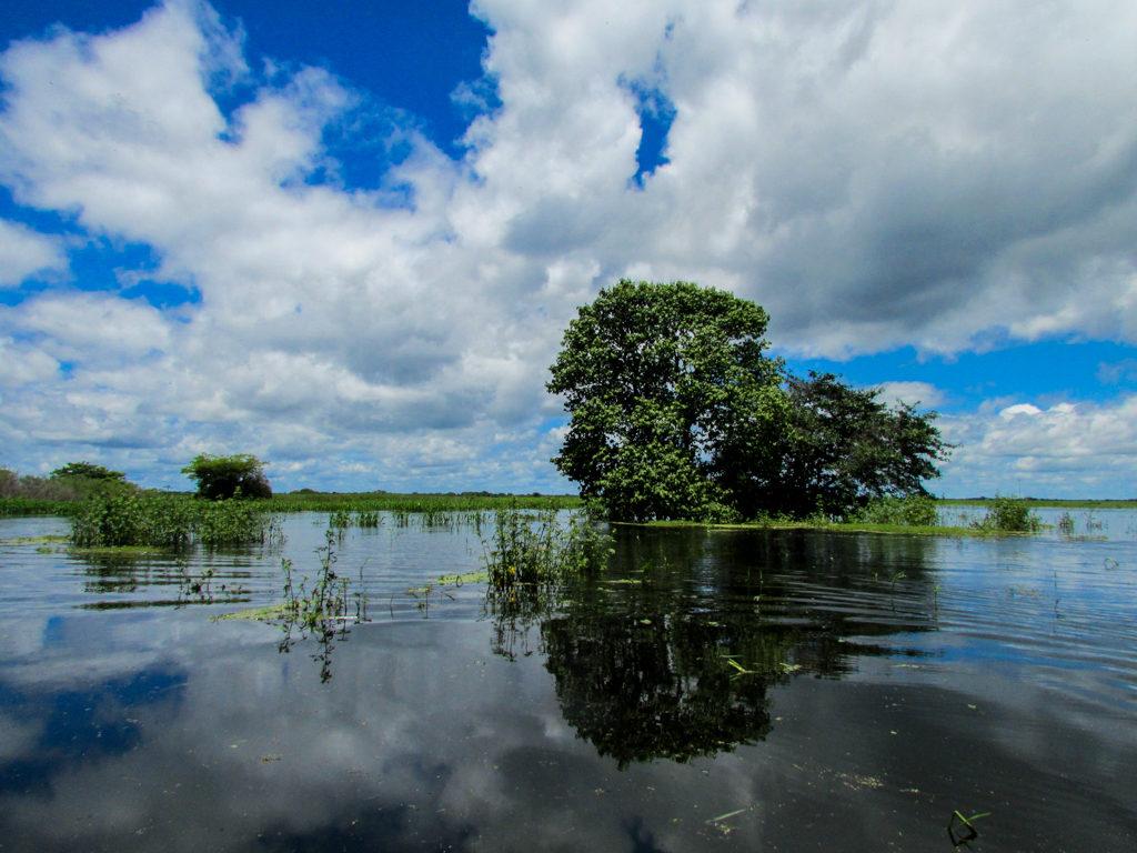 Paisajes del Llano